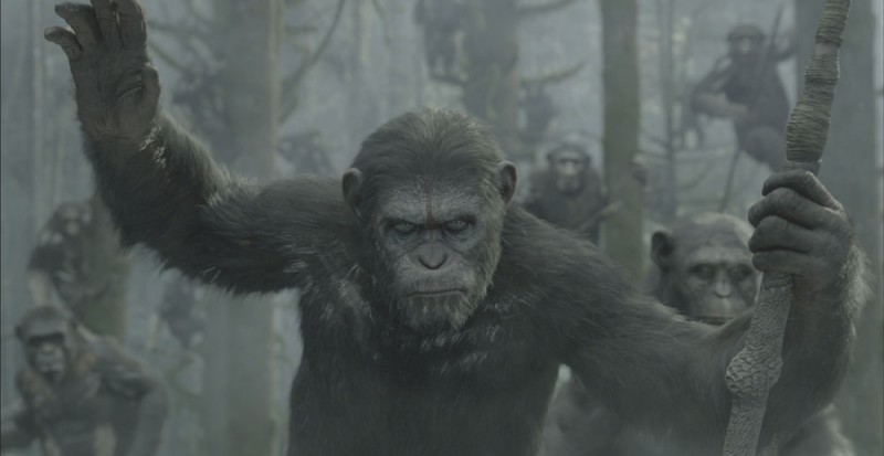 Fotografie z filmu  / Dawn of the Planet of the Apes