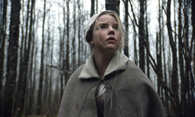Fotografie z filmu Čarodějnice / The Witch