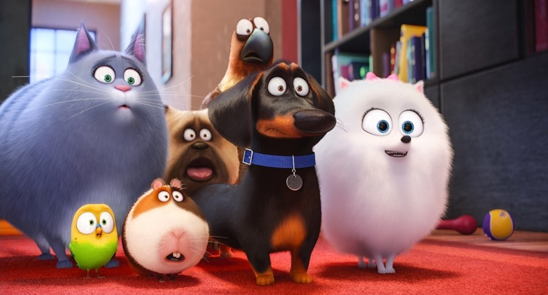 Fotografie z filmu Tajný život mazlíčků / The Secret Life of Pets