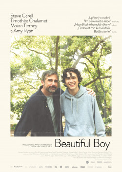 Český plakát filmu Beautiful Boy / Beautiful Boy