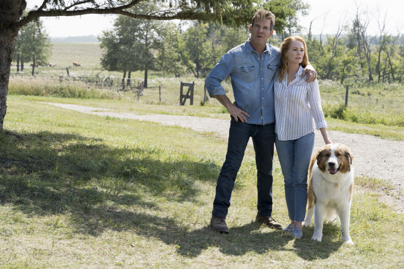 Dennis Quaid, Marg Helgenberger ve filmu Psí poslání 2 / A Dog's Journey