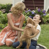 A Dog's Purpose (4x)
